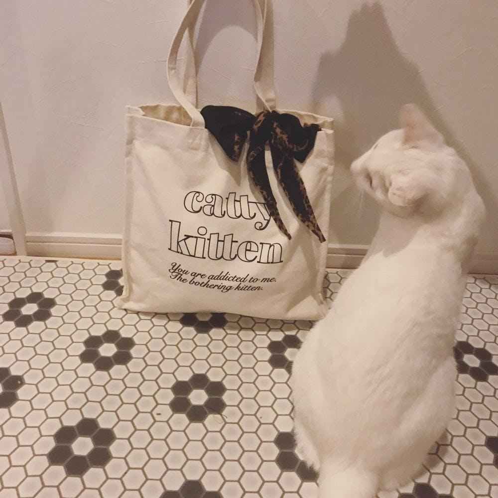 【4/24~順次発送】catty square bag