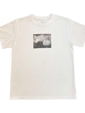 swan print photo T
