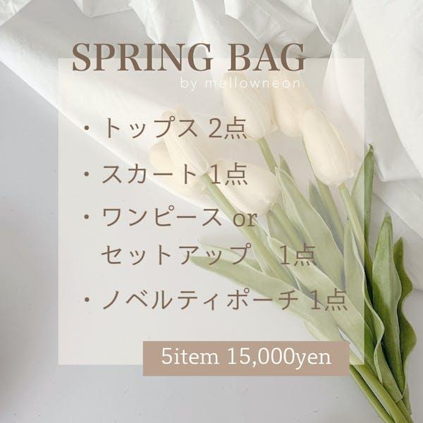 SPRING BAG 2021の画像2枚目