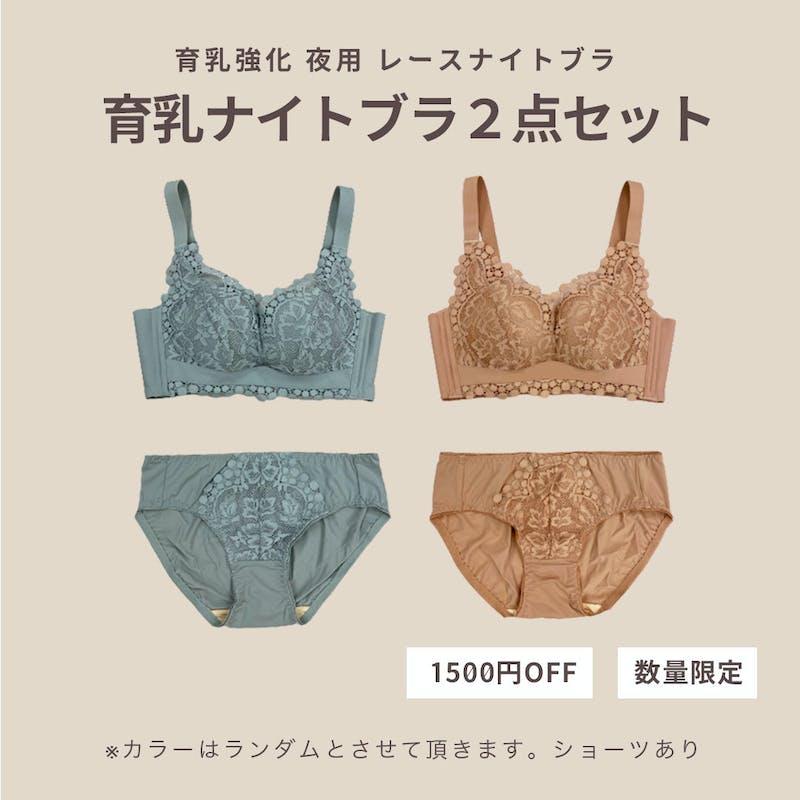 【数量限定 1500円OFF】育乳強化ナイトブラ2点セットの画像1枚目