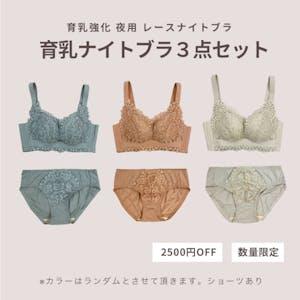 【数量限定 2500円OFF】育乳強化レースナイトブラ3点セット