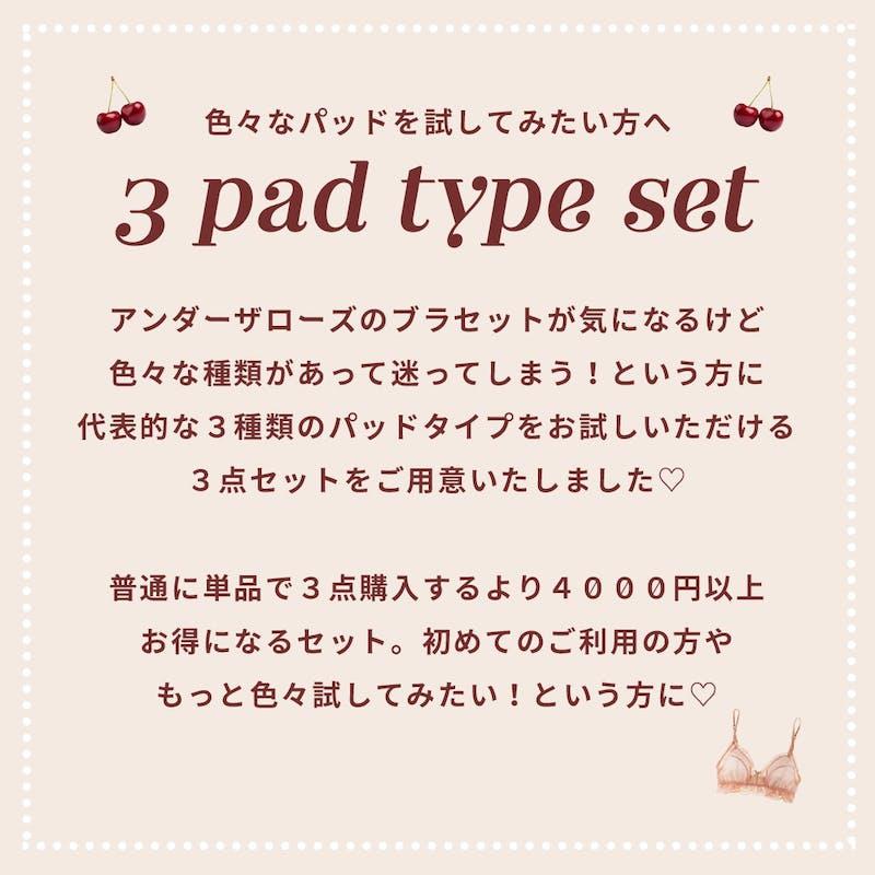 【4000円以上お得】3種類パッドが試せる!育乳ブラ組み合わせ3点セットの画像2枚目
