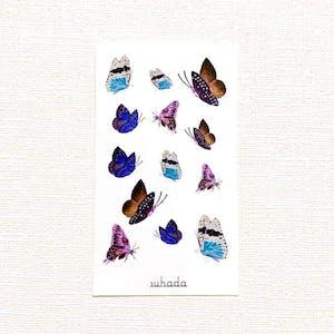 蝶の戯れ[ID: sor0656]
